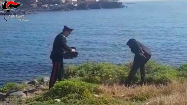 baby sitter, carabinieri, violenza sessuale, Catania, Cronaca