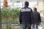 Lavoratori rumeni sfruttati nei campi e prostituzione a Comiso, in quattro a giudizio