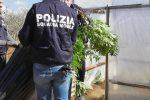 Scoperta una serra per la coltivazione di marijuana a Vittoria: arrestati padre e figlio