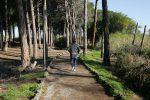 Catania, riapre il boschetto Plaia: conclusi i lavori di messa in sicurezza