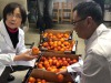 Arrivate sul mercato cinese le arance rosse siciliane