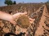 Clima: con siccità nei campi orticoltura si fa in dryfarming