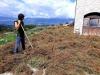 Clima: Coldiretti, Sos semine (-50%) in terre troppo aride