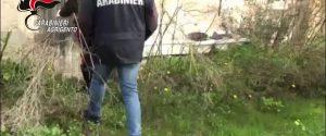 Faceva prostituire la figlia 13enne: orrore tra Menfi e Gibellina, arrestata la madre con altri 5