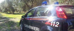 Furti di ortaggi nelle campagne e durante il servizio: arrestati due carabinieri a Chiaramonte Gulfi