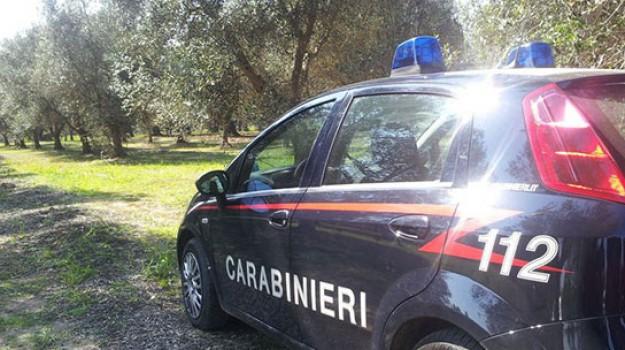 carabinieri, chiaramonte gulfi, furti, Ragusa, Cronaca