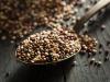 Arriva Quipu, la quinoa made in Italy