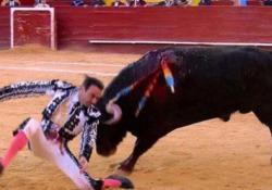 Il famoso torero spagnolo incornato durante la corrida a Valencia Protagonista è il 47enne Enrique Ponce - CorriereTV