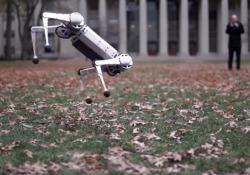 Il robot agilissimo che ha imparato a fare i salti all'indietro I salti di Cheetah, l'automa del laboratorio di robotica del Mit  - Corriere Tv