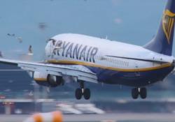 L'aereo finisce nello stormo di gabbiani durante l'atterraggio a Barcellona Il filmato dell'incidente all'aeroporto El Prat - CorriereTV