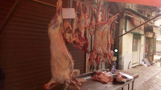 agnello, carne sequestrata, mercato capo, Palermo, Cronaca