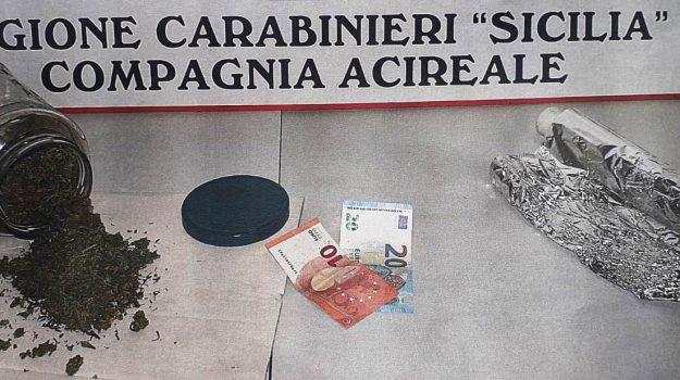 skunk, studente, via del Bosco, Catania, Cronaca