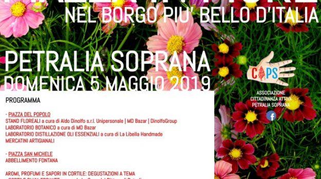 mercatini artigianali, Petralia soprana, Piazza in Fiore, Palermo, Cultura