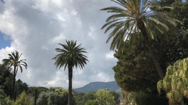 la domenica favorita, palazzina cinese, Villa Niscemi, Palermo, Cronaca