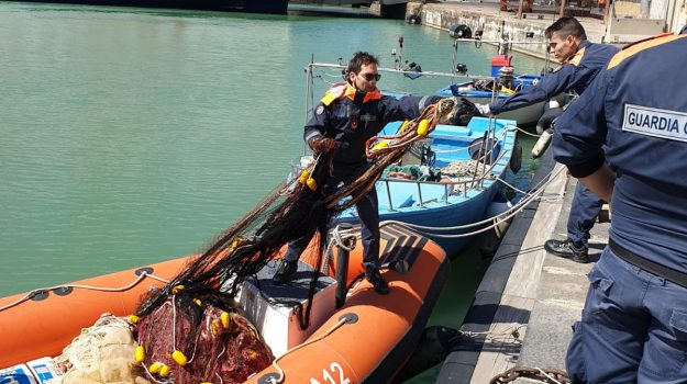 guardia costiera, novellame, pesca illegale, Catania, Cronaca