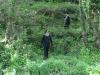 Nonno e nipotine si perdono in un bosco di Barcellona, ritrovati