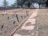 Degrado al cimitero monumentale di Paternò, i provvedimenti del Comune