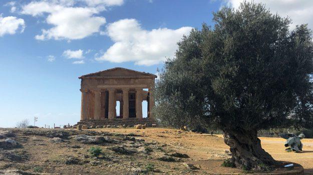 musei aperti, Pasqua, Valle dei Templi, Agrigento, Cultura