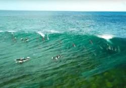 I delfini nuotano sotto i surfisti: il bellissimo filmato dall'Australia Il branco cavalca le onde fino a riva - CorriereTV