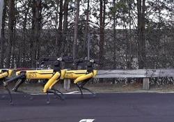 La marcia dei robot: i cani SpotMini trainano un grosso camion Il video (un po' inquietante) diffuso da Boston Dynamics - CorriereTV