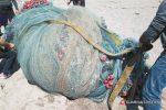 Sequestrata rete da pesca illegale da tre chilometri a Capo d'Orlando