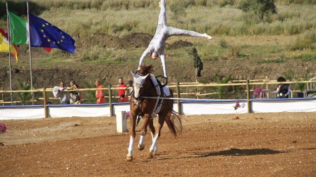 fiera del cavallo, Sicilia, Cultura