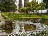 Parco Archeologico del Colosseo, uno scorcio del roseto Boni