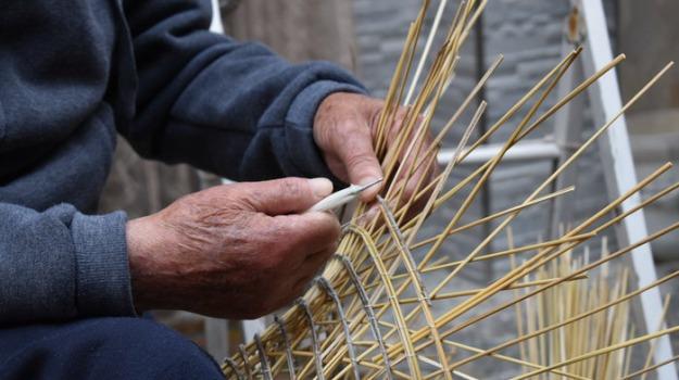pescatori, protesta, Selinunte, Trapani, Politica