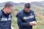 Bracconaggio in Sicilia orientale: sette denunce, sequestrati fucili