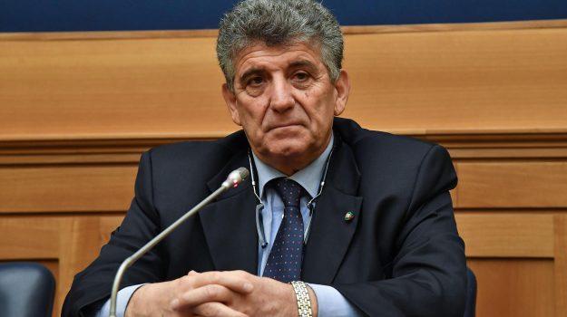 elezioni europee, Parlamento europeo, Pietro Bartolo, Sicilia, Politica