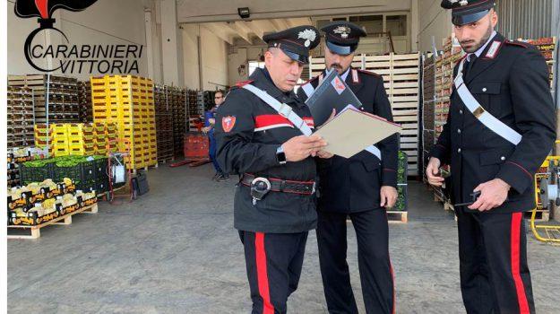 carabinieri vittoria, lavoro in nero, mercato ortofrutticolo vittoria, Ragusa, Cronaca