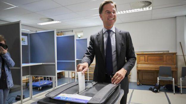 elezioni europee, laburisti, olanda, Sicilia, Mondo