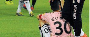Palermo in serie C. La Lega conferma le date dei play-off e annulla i play-out: ricorso al Tar