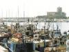 Porto peschereccio di Trapani, sospese le concessioni