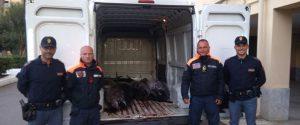 Palermo, sequestrata una tonnellata di tonno rosso: scatta una multa da 8 mila euro