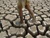 Giornata desertificazione: Centinaio,investiti oltre 900 mln
