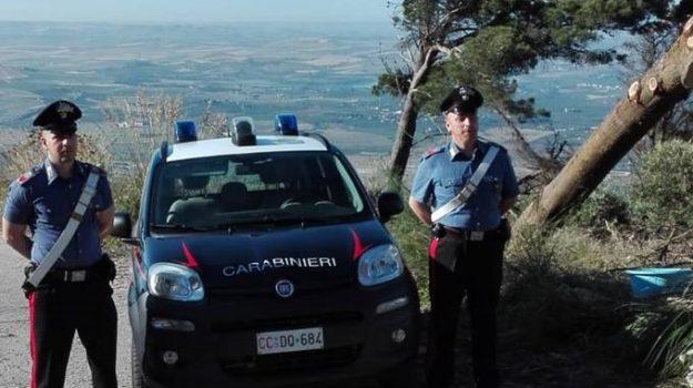 arrestato forestale, erice, Mario Alberto Perrera, Trapani, Cronaca