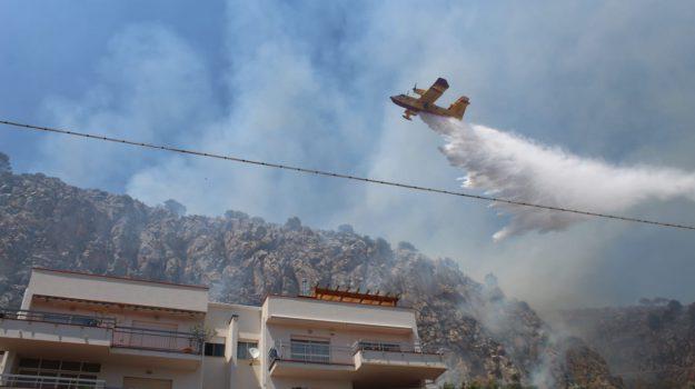 Capo Gallo, incendio, incendio pizzo sella, mondello, via Tolomea, Palermo, Cronaca