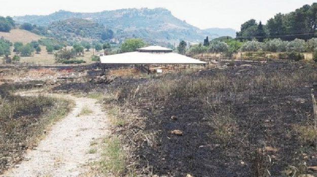 incendio, Morgantina, Giuseppe Birrittella, Enna, Cronaca