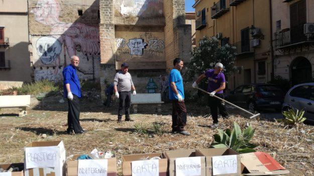 comune di palermo, LAVORO, reddito di cittadinanza, volontari, Antonio Nicola, Dario Chinnici, Marcello Susinno, Palermo, Politica