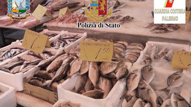 intossicazione, pesce, sequestro, tonno, Palermo, Cronaca