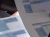 """Reddito di cittadinanza, M5S: """"Nel Palermitano firmati 13.256 contratti di lavoro"""""""