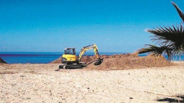 posidonia, spiaggia Tonnarella, Trapani, Cronaca