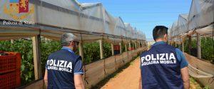 La polizia arriva nelle aziende agricole