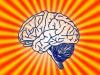 Nel cervello la fabbrica delle illusioni (fonte: Pixabay)