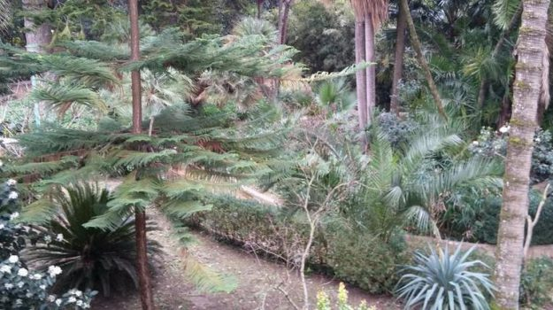Giardini del Gattopardo, regione siciliana, Santa Margherita di belice, Agrigento, Economia
