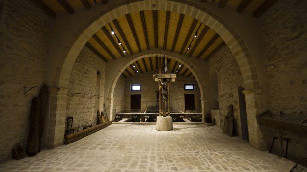 azienda vinicola, incendio, Vittoria, Ragusa, Cronaca