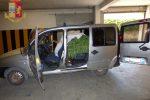 Trovato con 1700 piante di marijuana nel furgone, arrestato a Piazza Armerina