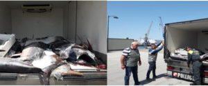Messina, sequestrate 1,4 tonnellate di tonno privo di tracciabilità: pesce in un furgone