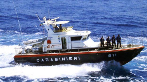 comandante, motopesca, rimorchio gabbia tonni, Trapani, Cronaca